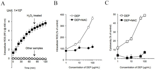 DEPs induced intracellular ROS generation in capillary-like tube cells and caused cytotoxicity.(A) DEPs were incubated in the cell-free system for 2 h. Cm-H2DCFDA assays were then carried out. ROS production is shown for each sample. (B) HUVECs were exposed to DEPs ± NAC for 24 h. Intracellular ROS is shown. (C) Tube cells were exposed to DEPs with or without the addition of NAC. Cytotoxicity was measured as described in the Methods.