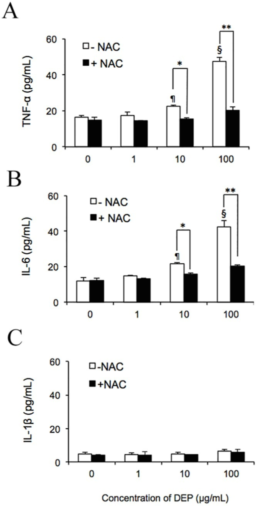 DEP-induced ROS promoted secretion of TNF-α and IL-6 by capillary-like tube cultures in vitro.After exposing endothelial tubes to 1, 10, or 100 μg/mL DEPs with or without NAC, medium was collected for evaluation by ELISA. Concentrations of TNF-α (A), IL-6 (B), and IL-1β (C) were measured and were quantified according to comparison with a standard curve. ¶ and § indicate significant differences (P < 0.01 and P < 0.001) between DEP-treated samples and the untreated control (0 μg/mL). Significance was reached at *p < 0.05 and **p < 0.01 in samples treated with 10 and 100 μg/mL DEPs compared to the same amount of DEPs plus NAC. Values represent means ± SDs (n = 6). Statistical analysis was carried out using the Student's t-test.
