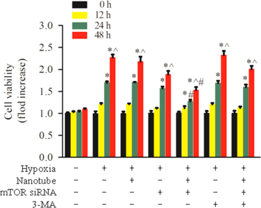 Effect of mTOR siRNA-DNA-NTs on the growth of PASMCs under hypoxic condition. The cell viability was assessed by MTT assay. All of the data were normalized to the mean count numbers under normoxia. The data are the mean±S.E. (n=4). *p<0.05 versus the normal group (0 h), ^p<0.05 versus the group with 24 h of treatment, and #p<0.05 versus the corresponding hypoxic group at 24 or 48 h.