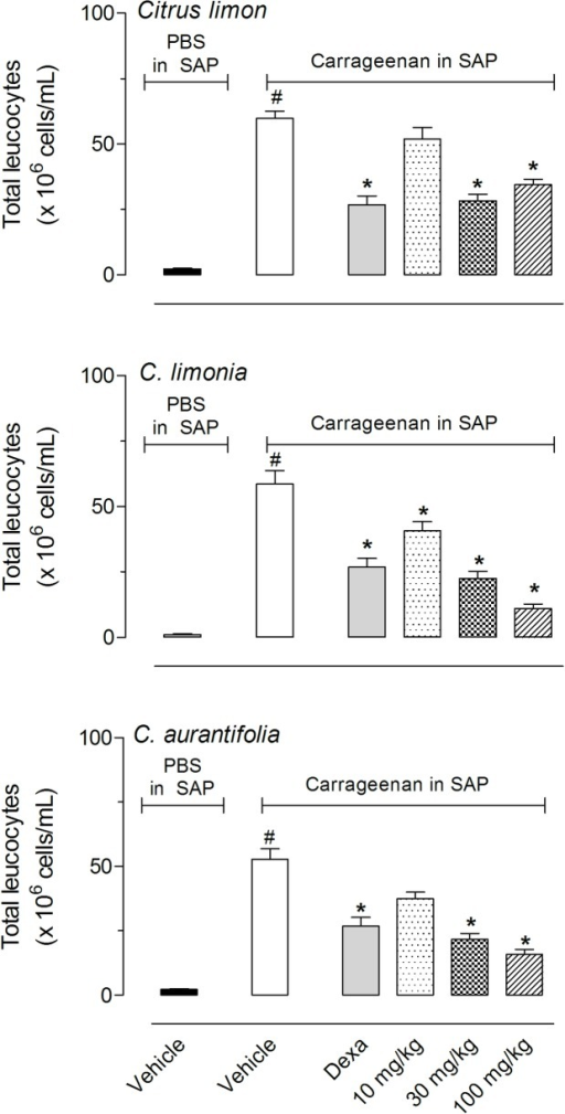 Effects of C. limon, C. limonia and C. aurantifolia essential oils on leukocyte migration into the subcutaneous air pouch (SAP).Animals were pretreated with different doses of the essential oils, dexamethasone (Dexa, 5 mg/kg, i.p.) or vehicle 1 h prior to carrageenan (1%) injection into the SAP. The results are presented as the mean ± S.D. (n = 10 per group) of cells (x 106/mL) in the SAP. Statistical significance was calculated by ANOVA followed by Bonferroni's test. #P < 0.05 when comparing vehicle treated group that received carrageenan in the SAP with vehicle-treated animals that received PBS in SAP; *P < 0.05 when comparing essential oils-treated animals with that received carrageenan in the SAP with the group that only received carrageenan in the SAP.