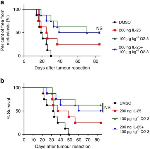 In vivo treatment of Q2-3 confers comparable anti-metastatic activity with IL-25 administration.(a) Tumour-resected mice (n=8 per group) were treated with PBS (0.1% DMSO in saline), IL-25 (200 ng per mice), Q2-3 (100 μg kg−1) or co-treated with IL-25 and Q2-3 for 3 weeks. Quantification of tumour metastasis by measuring luciferase activity in photons s−1 cm−2 sr−1 in mice revealed along the indicated time course. (b) Survival of test mice after different treatments. NS, no significant difference between the Q2-3 and co-treatment groups (Kaplan–Meier results were analysed by log-rank test). Similar results were obtained from three independent experiments.