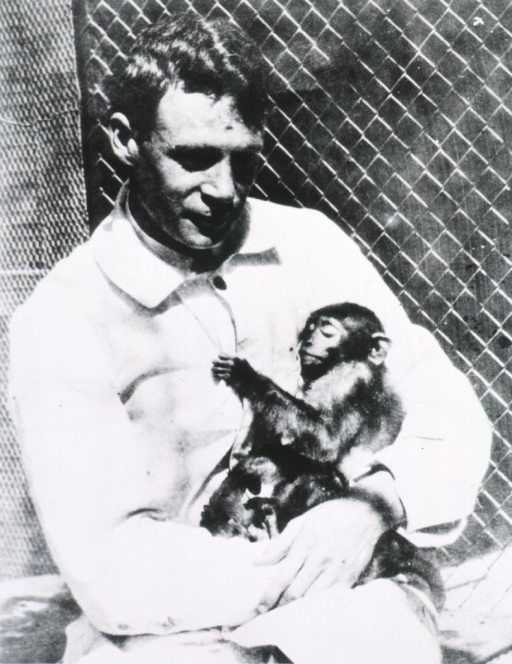 <p>Howard Ricketts, half length, wearing lab coat (?), holding a chimpanzee.</p>
