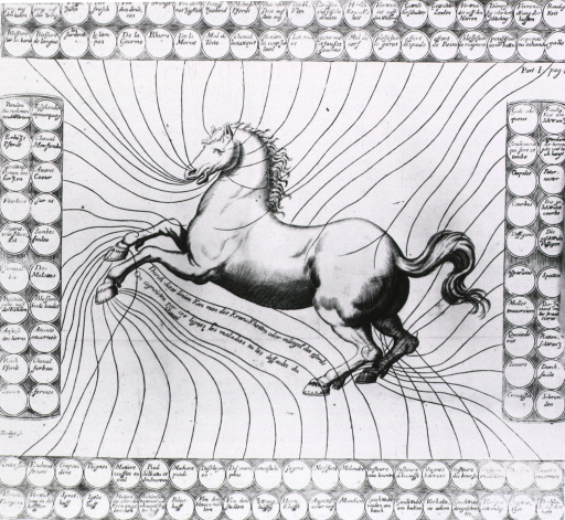 <p>Full length, left side view of a horse with front feet raised off the ground; circles with disease names in them form a border on all sides; lines drawn from horse to circle indicate location and type of disease to which the horse is susceptible.</p>
