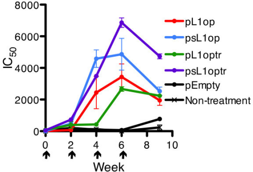 Effects of signal peptide and presence or absence of transmembrane domain on VACV neutralizing antibodies. Mice (n = 5) were immunized at 0 time and weeks 2, 4 and 6 with plasmids using a gene gun. Mice were bled at 2 weeks after each of the first three immunizations and 3 weeks after the last. Neutralizing activity was determined by flow cytometry. Arrows point to days of immunization