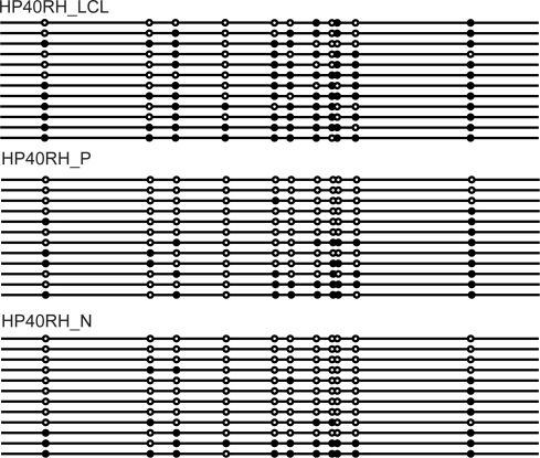 DNMT3L bisulphite sequencing: HP40RH_LCL lymphoblastic cell line DNA, HP40RH_P polyp DNA and normal mucosa DNA HP40RH_N.Each line represents a sequenced clone and DNA methylation information is presented as a circle denoting the CpG site where methylation could occur. Black circles represent methylated CpG's while white circles represent unmethylated CpG's. The promoter of DNMT3L was observed to be less methylated in normal mucosa and polyp tissue but methylated in lymphoblastic cell line DNA.