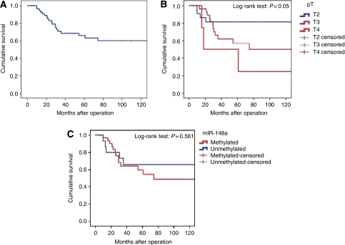 Box and Whisker plot and Kaplan–Meier disease-free survival analysis for CRC patients according to miR-148a hypermethylation pattern. (A) The 10-year survival rate (60%) of CRC patients was calculated using the Kaplan–Meier method. (B) Survival rate of CRC patients according to depth of invasion. The difference is statistically significant (log-rank test: P<0.05). (C) The prognostic value of miR-148a methylation status was with a trend towards lower survival rate in patients with methylated alleles (10-year survival probability: 48%) compared with unmethylated cases (10-year survival probability: 65%), log-rank test: P=0.561.