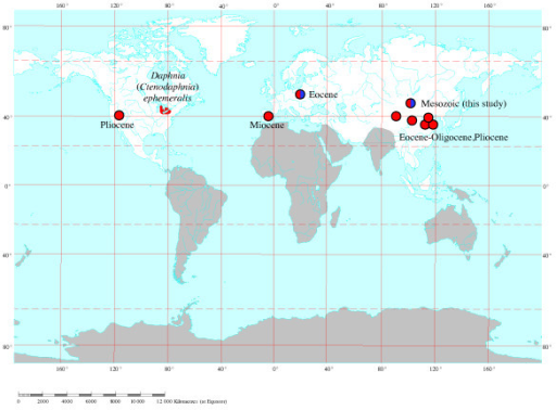 Global Map Showing Fossil Records Of The Genus Daphnia And The Antiquity Of The Subgenus Ctenodaphnia