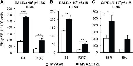 Analysis of the immune response generated in local draining lymph nodes (LNs) to the site of immunization.Groups of four mice were immunized as indicated in the bar charts with 107 pfu of MVAwt (white bars) or MVAΔC12L (black bars) and seven dpi specific T-cell responses against the indicated peptides were evaluated in the regional draining LNs to the different immunization routes as depicted in the Figure. The magnitude of the response was measured by IFN-γ Elispot assay after 24 hr stimulation. Background (RPMI control) subtracted data are depicted as mean IFN-γ spot forming units (SFU) per 106 cells ± SD. SC: subcutaneous; IN: intranasal; IM: intramuscular; ILN: inguinal lymph nodes; CLN: cervical lymph nodes. Statistically significant differences: *p<0.05, **p<0.01, ***p<0.001.