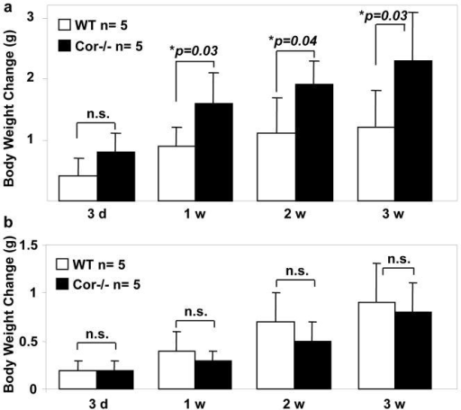 Increased body weight in Cor−/− mice on high salt dietWT and Cor−/− mice were on 4% NaCl (a) or 0.3% NaCl (b) diets. Body weight changes up to 3 weeks were examined. n=5 per group. P values vs. WT of the same group by two-way ANOVA were shown. n.s., not statistically significant.