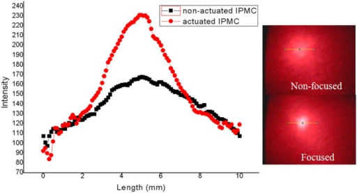 The intensity profile of the laser beam spot with non-actuated IPMC (non-focused) and actuated IPMC (focused).