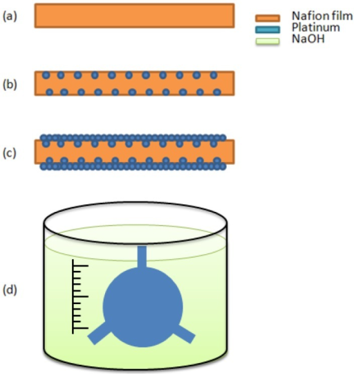 The IPMC process flow. (a) ion exchange polymer formation and pre-process; (b) initial compositing; (c) surface electrode growing; (d) shape cutting and immersing in the salt solution.