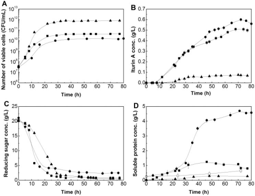 Time courses of the number of viable cells (A), iturin A concentration (B), reducing sugar (C) and soluble protein concentration (D) with different nitrogen sources in bioreactor batch fermentation.•: rapeseed meal; ▪: peptone; ▴: ammonium nitrate. Error bars represent the standard deviation of the means (N = 3).