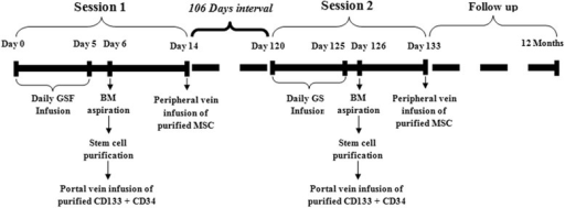 Stem cell treatment schedule of patients who received two sessions. BM bone marrow, G-CSF, MSC mesenchymal stem cell