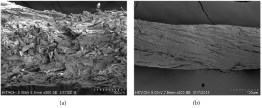 Scanning electron micrograph of (a) untreated durian peel and (b) cellulose.