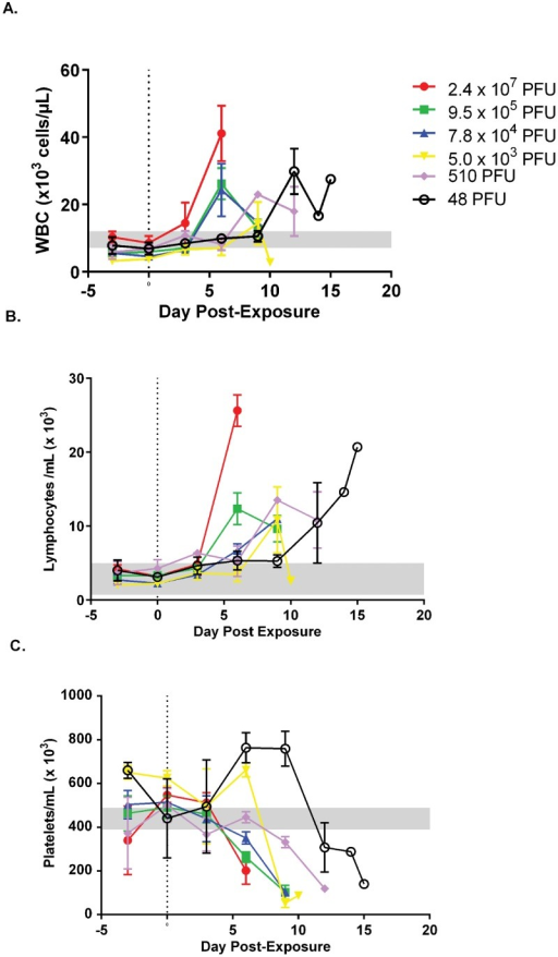 Temporal evaluation of white blood cells (WBC) and platelets in marmosets exposed to decreasing doses of monkeypox virus.Values were obtained using EDTA whole blood using a Beckman ACT 10 Hematology Analyzer. Absolute values by group are presented for WBC, A, and lymphocytes, B, and platelets, C. Notice the increase and temporal shift for the lower dose groups in reference to the total WBC and lymphocytes, A and B. Decreasing platelet numbers were also apparent. Reference ranges are from [33] (WBC and platelets) and [20] (lymphocyte #).