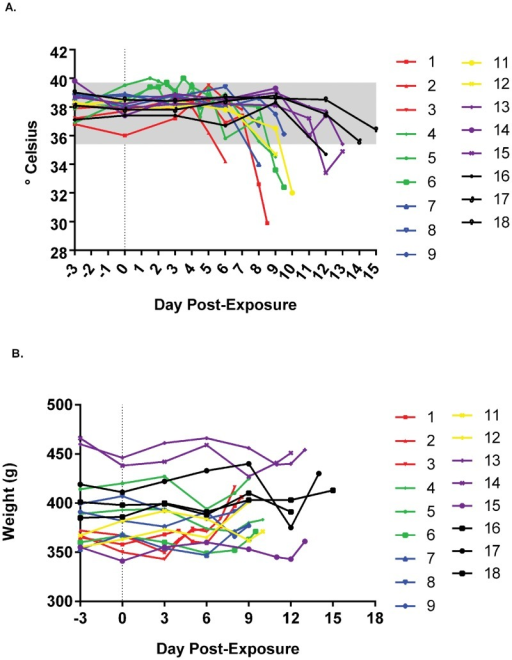 Evaluation of weights and temperature in marmosets exposed to decreasing doses of monkeypox virus.Absolute values of temperatures, A, and weight, B, are provided. Temperatures were rectally acquired except for 9.5 x 105 PFU dosing group, in which subcutaneous implants (BMDS) were used until failure of the equipment (day 6 post exposure). Data for groups/individuals have been color coded to match previous graphs and normal ranges from [33], A, are provided as a shaded box.