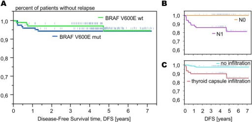 The presence of BRAF mutation did not increase the risk of cancer relapse (A). However, known histopathological factors, such as lymph node involvement (B) and thyroid capsule infiltration (C) significantly influenced disease-free survival.