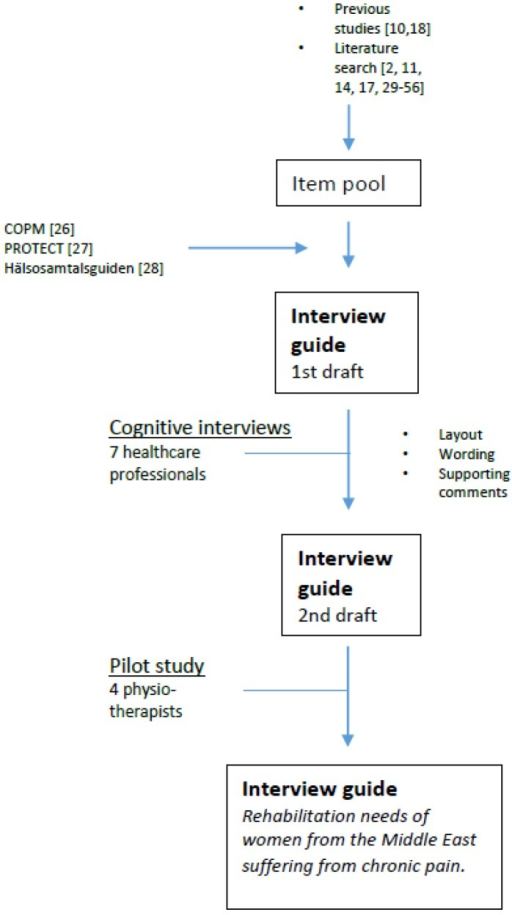 Development of the interview guide.