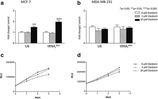 Daidzein induces U6 snRNA and tRNAiMet specifically in MCF-7 cells without inducing proliferation. MCF-7 (a) and MDA-MB-231 (b) cells were treated with 0, 3, 10 μM daidzein for 48 h. U6 snRNA and tRNAiMet expression was then analysed by qRT-PCRusing the ΔΔCt method with RPS13 expression levels as a reference for normalization. Meta-analysis of three independent experiments performed in triplicate was completed using one-way ANOVA with a Tukey's post-test with a 95 % confidence interval (Graphpad Prism 3.03); * = p <0.05; ** = p < 0.01; *** = p < 0.001. CellTiter-Glo® (Promega) was used to count MCF- 7 (c) and MDA-MB-231 cells (d) after 24, 48 and 72 h treatment with 0, 3 or 10 μM daidzein, as indicated. Each dose and time point was performed in triplicate. MDA-MD-231 cell proliferation significantly decreased with 10 μM daidzein after 48 h (p < 0.05) and 72 h (p < 0.01) treatment. MCF-7 cell proliferation significantly decreased at 48 h (p < 0.01) with 3 μM daidzein treatment. At 10 μM daidzein treatment cell proliferation was significantly inhibited in MCF-7 cells at 24 h (p < 0.05), 48 h (p < 0.01) and 72 h (p < 0.01)
