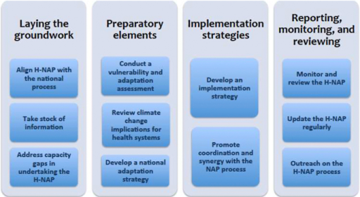 Elements and steps in conducting the health component of a national adaptation plan (H-NAP). (Based on WHO 2014.)