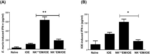 Depletion of NK cells in NK-/-EM/IOE mice decreased production of IFN-γ.The levels of IFN-γ in bulk culture of splenocytes from the indicated mice groups, harvested on day 7 after IOE infection, and stimulated in vitro with either E. muris (A) or IOE (B) Ags, were measured by ELISA. The antigen-specific IFN-γ response was calculated by subtraction of the IFN-γ concentration produced by unstimulated cells from the Ags-stimulated cells. The data show a significantly lower production of E. muris- (A) and IOE- (B) specific IFN-γ by splenocytes from NK-/-EM/IOE mice compared with similarly-stimulated cells from NK+/+EM/IOE mice. The levels of IFN-γ in NK-/-EM/IOE-mice were similar to those detected in naïve mice infected with IOE. * and ** indicate P < 0.05 and P < 0.01, respectively. Data are representative of two independent experiments with four mice per group.