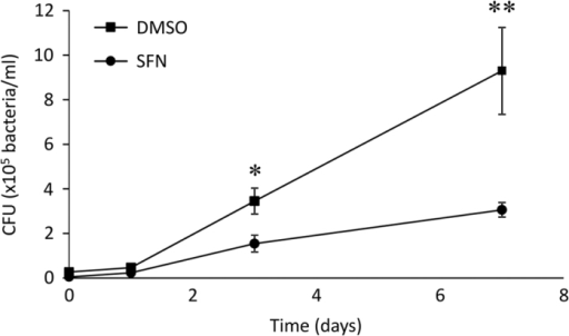 SFN showed a decrease in mycobacterial burden in infected macrophages. THP-1-derived macrophages were pretreated with DMSO or 10 μM SFN 3 h before infection with M. abscessus for 3 h. The unincorporated mycobacteria were incubated in culture medium containing 250 μg/ml amikacin for 1 h before thorough washes. The cells were then incubated in medium with 50 μg/ml amikacin for the indicated time period (0, 1, 3, and 7 days). Intracellular mycobacteria were released by cell lysing in ice-cold water, serially diluted, and seeded on agar plates. Colony-forming units were counted 5 days after incubation at 37 °C. The graph represents the means±S.E.M. of two independent experiments done in triplicates. *P<0.03, **P<0.01.