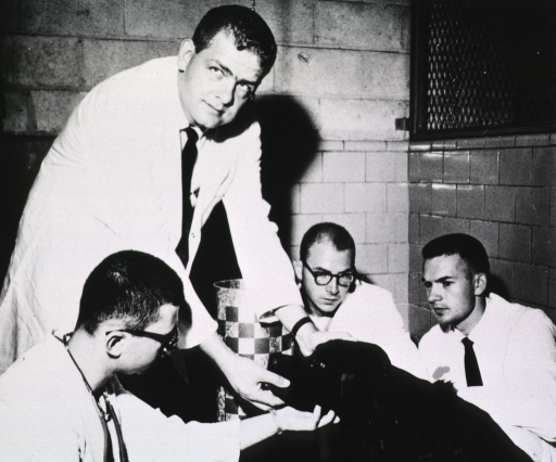 <p>Four men wearing white lab coats examine a dog.</p>