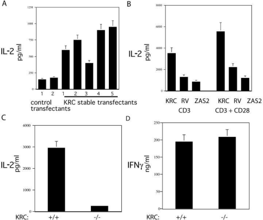 KRC overexpression increases, whereas KRC loss decreases endogenous IL-2 production. (A) Jurkat T cells were stably transfected with vector (pEF) or KRC expression plasmids. Stable clones were stimulated for 18 h with 50 ng/ml PMA plus 2 μM ionomycin, and IL-2 production was measured by ELISA. (B) Primary CD4+ T cells were activated for 36 h and subsequently transduced with control (RV), KRC, or KRC dominant-negative (ZAS2) bicistronic GFP-expressing retroviruses. GFP-positive cells were sorted and stimulated for 24 h with anti-CD3 or anti-CD3/anti-CD28 antibodies and IL-2 production was measured by ELISA. (C) CD4 T cells from KRC+/+ or −/− mice were stimulated with anti-CD3 (1.0 μg/ml)/CD28 (0.5 μg/ml) antibodies for 24 h, and IL-2 production was measured by ELISA. (D) CD4 T cells from KRC+/+ or −/− mice were stimulated with anti-CD3/CD28 antibodies for 72 h in the presence of 200 U/ml of human IL-2. IFNγ production was measured by ELISA. Data shown are representative of four independent experiments with similar results.