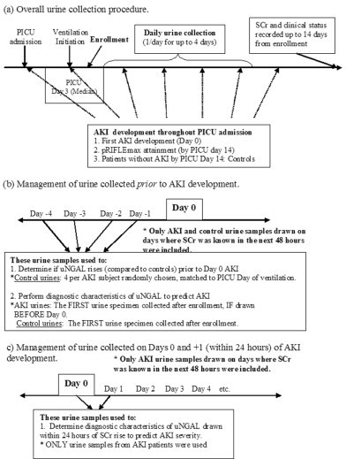 description of urine collection procedures and use of u open i