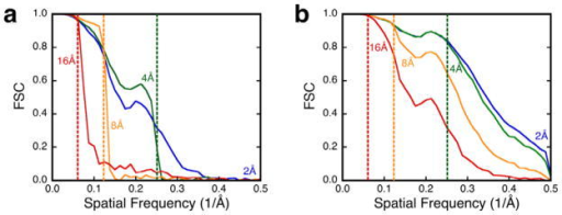 Resolution-limited alignment of proteinase K for SNR values of (a) 0.01 and (b) 0.1 show the difference between dominance of noise and alignable images. The dotted lines indicate the different resolution limits imposed: blue, 2 Å; green, 4 Å; orange, 8 Å; red, 16 Å. Images used: 104.