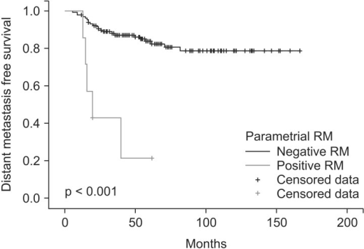Distant metastasis free survival for 7 patients with positive or close parametrial resection margin (RM) and 128 patients without positive or close parametrial RM.