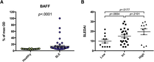 Anti-BAFF is present in a subset of pediatric SLE patients with active disease. a Recombinant BAFF was used to coat 96-well ELISA plates, and sera from 45 pSLE patients and 24 age-matched healthy controls were used to probe them in triplicate. HRP-conjugated goat anti-human IgG (heavy and light chain) was used as a secondary reagent. After development with TMB substrate, absorbance was measured at 450 nm, and each sample is shown as a percentage of the maximum absorbance. b The pSLE patients were divided into groups based on their serum reactivity to BAFF. The modified SELENA-SLEDAI is shown for the lowest quartile (Low, <5.8), middle two quartiles (Int), and highest quartile (High, >11.0). Mann–Whitney tests were used to compare reactivity between groups (bars show mean ± SEM). BAFF B cell-activating factor, ELISA enzyme-linked immunosorbent assay, IgG immunoglobulin G, HRP horseradish peroxidase, pSLE pediatric systemic lupus erythematosus, SELENA-SLEDAI Safety of Estrogen in Lupus Erythematosus National Assessment-SLE disease activity index, SLE systemic lupus erythematosus, TMB 3,3′,5,5′-tetramethylbenzidine