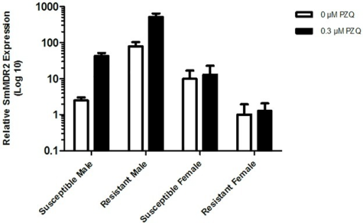 Relative expression level of SmMDR2 RNA.In males and females of PZQ-susceptible and PZQ-resistant parasite strains in the presence and absence of PZQ. White bars—RNA from adult worms without exposure to PZQ, and black bars—RNA from adult worms after exposure to PZQ. The n-fold changes were determined by quantitative RT-PCR using S. mansoni 18S (Sm18s) RNA of each group was used as a reference gene. Differences of the relative level of SmMDR2 between the groups was done using ANOVA, p < 0.05.