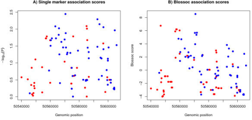 Association analysis on typed and imputed markers. A) Single marker association, B) Blossoc analysis. The blue dots indicate markers that were typed in the case/control data, while the red dots indicate markers that were imputed for the case/control individuals using GVS data.