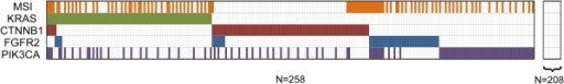 Pattern of KRAS, CTNNB1, FGFR2, PIK3CA mutations and MSI status in 466 endometrioid endometrial tumors.Gene mutations and MSI positive status are depicted by colored bars. 258 tumors had a mutation in at least one of the genes evaluated, whereas 208 tumors did not demonstrate mutation of KRAS, CTNNB1, FGFR2, or PIK3CA.