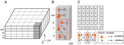 The configuration of the LCM.(A) The LCM simulates five cortical layers. Cortical layers are discretized to a grid of elements, which contain two neuron groups: excitatory and inhibitory. (B) The laminar connection between cortical layers is illustrated. Only the strong connections are shown in the figure. For the complete connection map please refer to Table S1 of Text S2. (C) The connections between neuron groups within a lamina are shown.
