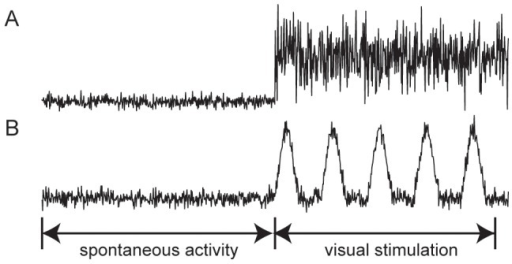 Afferent spike rates corresponding to visual stimulations.(A) Spike rates correspond to spontaneous activity followed by constant visual stimulation, and (B) spike rates represent to spontaneous activity prior to intermittent light stimulation.