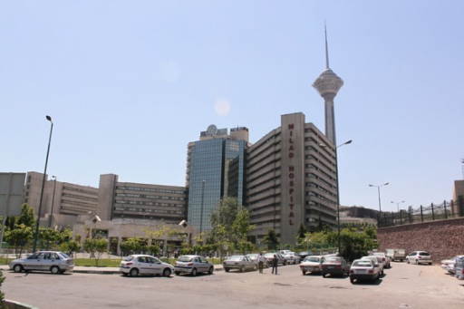 Milad Hospital, Tehran- Note Lack of Landscape