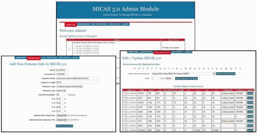 The administration module interface of MICAS3.0 using which the database administrator can add microsatellites of new genomes and can update the database easily.