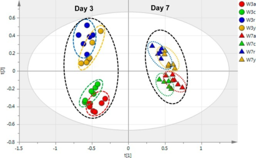 PCA score plot for the overall NMR data fromextracts of the fourcultivars at both day 3 (circles) and day 7 (triangles) post wounding(W). The samples are coded for Atlantic (red, a), Chipeta (green,c), Norkotah Russet (blue, r), and Yukon Gold (gold, y).