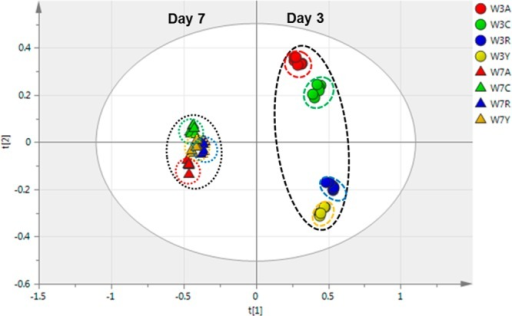 PCA score plot for the overall LC-MS data fromextracts of thecultivars at both day 3 (circles) and day 7 (triangles) post wounding(W). The periderm samples are coded for Atlantic (red, a), Chipeta(green, c), Norkotah Russet (blue, r), and Yukon Gold (gold, y).