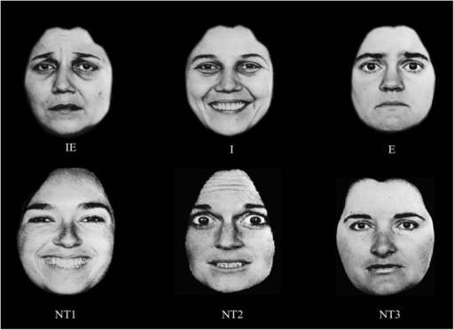An example of the stimuli in Yankouskaya et al. (2012). IE—a face containing both the target identity and the target emotional expression; I—a face containing the target identity but not the expression; E—a face containing target emotional expression; NT1–NT3 faces containing neither the target identity nor the target emotion. In this study we used faces from the NimStim database, but because of publication restriction on faces from that database, we presenting here other faces (taken from Ekman, 1993) as examples only.