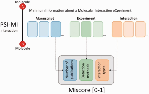 The MIscore normalized score calculates a composite score for an interaction based on the number of publications reporting the interaction, the reported interaction detection methods and interaction types.