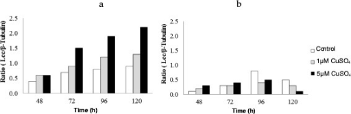 Detection of Lcc gene expression byNigrosporasp. CBMAI 1328 (a) andArthopyreniasp. CBMAI 1330 (b) in different conditions by using RT-PCR. The Lcc gene expression was determined by the relative intensity based on the ratio between the Lcc gene expressions relative to β-tubulin.