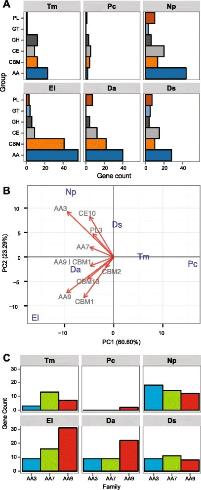 Composition of secreted CAZymes in the 90 significantly expanded gene families of ascomycete trunk pathogens. (a) Number of genes in each CAZyme superfamilies. GH: Glycoside Hydrolases, GT: Glycosyl Transferases, PL: Polysaccharide Lyases, CE: Carbohydrate Esterases and AA: Auxiliary Activities. (b) Ascomycete trunk pathogens are plotted on the first two principal components based on phylogenetic PCA of CAZymes in the expanded gene families. Only vectors of the largest loadings are shown. (c) Bar plot showing the counts of AAs gene in expanded gene families in the ascomycete trunk pathogens