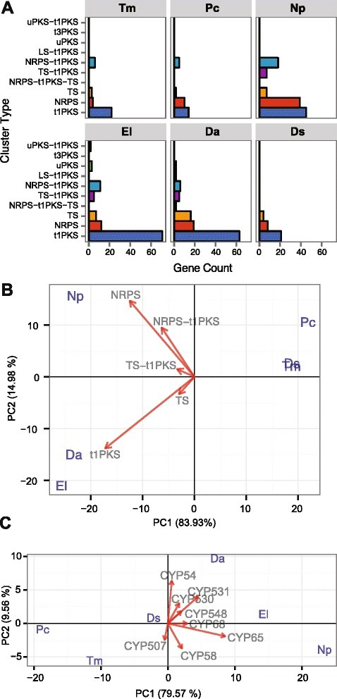 Secondary metabolism related proteins in the 90 significantly expanded gene families of ascomycete trunk pathogens. (a) Bar graph of genes divided by secondary metabolism cluster types according to Antismash classification. t1PKS: type 1 Polyketide Synthase, TS: Terpene Synthase, NRPS: Non-Ribosomal Peptide Synthetases, t3PKS: type 3 Polyketide Synthase, uPKS: unusual Polyketide Synthase PKS, LS: Lantipeptide Synthase (LS). (b and c) Ascomycete trunk pathogens are projected on the first two principal components based on phylogenetic PCA of genes encoding (b) proteins involved in secondary metabolism and (c) P450s in the significantly expanded gene families. Only vectors of the largest loadings are shown