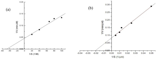 Determination of kinetic parameters of GDH-NOX.(a) Glycerol; (b) NADH. Experiment condition: glycerol concentration (0.01, 0.125, 0.014, 0.025, 0.05M), NADH concentration (20, 40, 60, 100, 200 μM). pH 7.0, 37°C.
