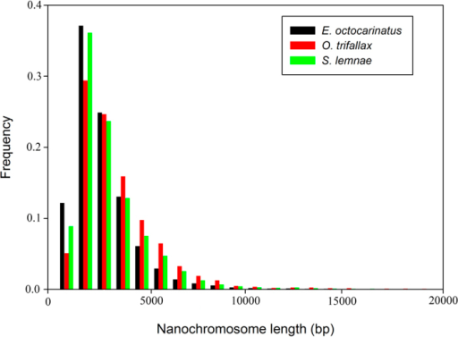 Length distribution of nanochromosomes of three highly fragmented macronuclear genomes.X axis is the contig length (nucleotides), Y axis is the frequency of contigs with the indicated lengths. The histograms show normalized frequencies for 29,413 nanochromosomes of Euplotes octocarinatus, 15,085 nanochromosomes of Oxytricha trifallax and 16,029 nanochromosomes of Stylonychia lemnae.