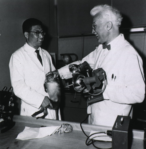 <p>Half length, left profile; wearing glasses; in lab coat, standing in lab, holding camera in preperation of photographing a monkey; a graduate student holds the monkey (student's name: Dr. Kwai-wang Shyu).</p>
