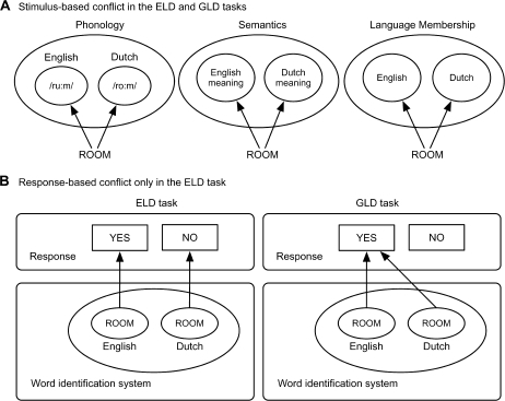 "Sources of stimulus-based and response-based language conflicts for interlingual homographs in the ELD task and the GLD task. (A) For Dutch–English bilinguals a stimulus-based language conflict is present in both tasks at the level of phonology (e.g., phonology of ROOM in English is /ru:m/, and in Dutch /ro:m/), semantics (ROOM has different meanings in Dutch (meaning ""cream"") and English), and different language memberships (ROOM is both a Dutch and an English word). (B) For Dutch–English bilinguals a response-based language conflict is present for interlingual homographs (e.g., ROOM) in the ELD task, because they can be interpreted as an English word (requiring a ""Yes"" response), and as a Dutch word (requiring a ""No"" response). In contrast, in a GLD task both interpretations of the homograph require a ""Yes"" response and therefore no response-based language conflict arises in this task."